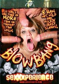 Blowbang Sexxxperience Porn Video