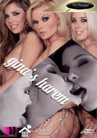 Ginas Harem Porn Movie