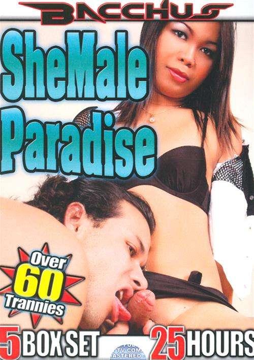 Shemale Paradise 24