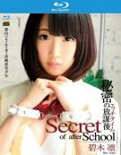 S Model 150: Secret Of After School Blu-ray