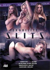 Exquisite Slits Porn Movie