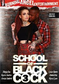 School Of Black Cock 3 Porn Movie