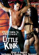 Playgirls Hottest A Little Kink Porn Movie