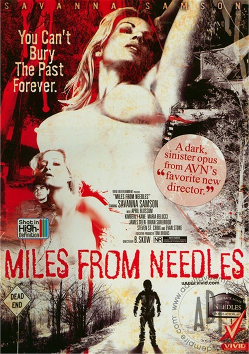 Miles From Needles image