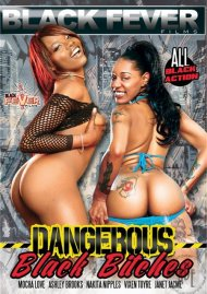 Dangerous Black Bitches Porn Movie