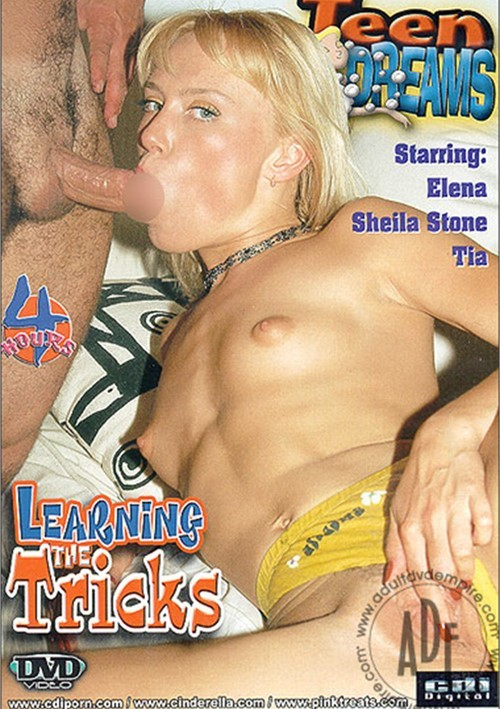 Teen Dreams: Learning the Tricks Cinderella 587093 Sheila Stone