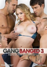 Gangbanged 3 Porn Video