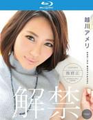 Catwalk Poison 141: Koshikawa Ameri Blu-ray
