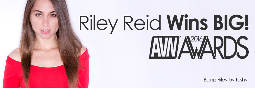 Riley Reid wins multiple AVN awards.