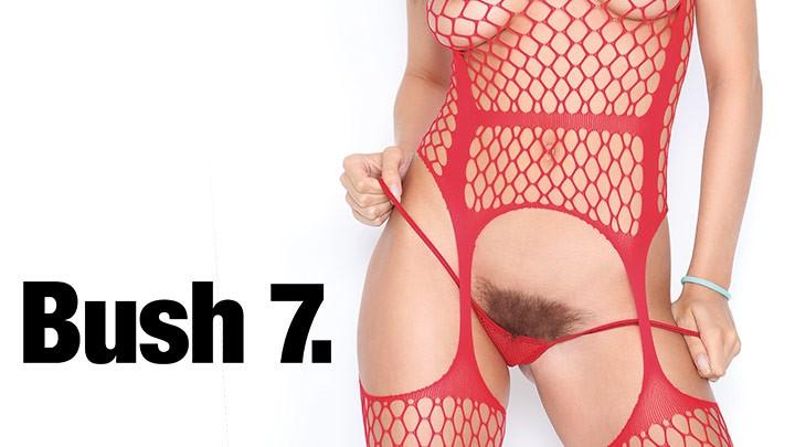 Behind the Scenes of Bush 7