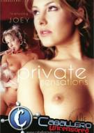 Private Sensations Porn Movie