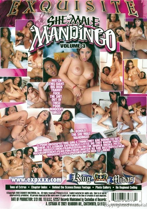 Shemale mamdingo 3-3094