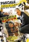 Dirty Little Sluts Boxcover