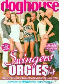 Swingers Orgies 4 Porn Video