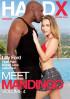 Meet Mandingo Vol. 4 Porn Movie