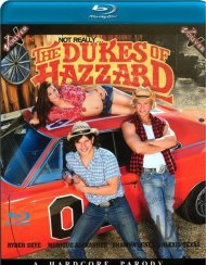 Not Really...Dukes Of Hazzard Blu-ray Movie
