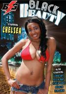 Black Beauty Porn Movie