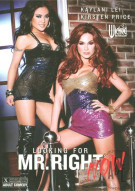 Looking For Mr. Right Now Porn Movie