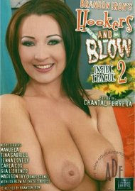 Hookers and Blow 2 Porn Video