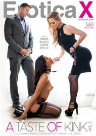 Taste Of Kink Vol. 2, A Porn Movie