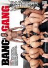 Bang Gang, The Boxcover