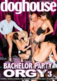 Bachelor Party Orgy 3 Porn Movie