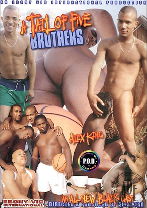 Tail of Five Brothers, A Boxcover