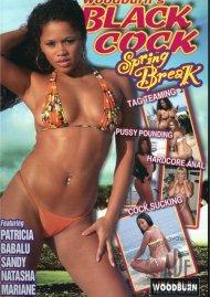 Black Cock Spring Break Porn Video