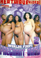 Worlds First Pregnant Orgy 2 Porn Video