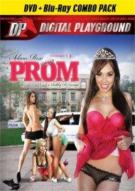 Prom (DVD + Blu-ray Combo) Porn Movie