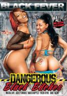 Dangerous Black Bitches Porn Movie