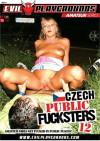 Czech Public Fucksters #12 Boxcover